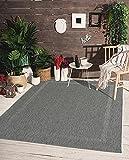 the carpet Mistra In- & Outdoor Teppich Flachgewebe, Modernes Design, Trendige Farben, Superflach, UV- und Witterungsbeständig, Bordüre, Anthrazit, 80 x 150 cm
