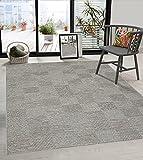 the carpet Calgary In- & Outdoor Teppich Flachgewebe, Modernes Design, Trendige Farben, Superflach, UV- und Witterungsbeständig, Grau-Beige, 120 x 160 cm