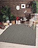 the carpet Mistra In- & Outdoor Teppich Flachgewebe, Modernes Design, Trendige Farben, Superflach, UV- und Witterungsbeständig, Anthrazit, 120 x 170 cm