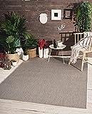 the carpet Mistra In- & Outdoor Teppich Flachgewebe, Modernes Design, Trendige Farben, Superflach, UV- und Witterungsbeständig, Grau, 60 x 110 cm