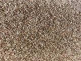 havatex Rasenteppich Kunstrasen mit Noppen 1.550 g/m² - Rot Blau Grau Braun Beige oder Anthrazit | Meterware | wasserdurchlässig | Balkon Terrasse Camping, Farbe:Beige, Größe:133 x 300 cm